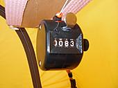 Imgp4848