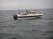 Imgp5493